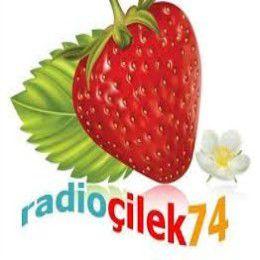 Radyo Çilek