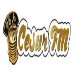 Cesur FM
